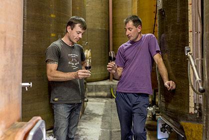 Découvrez l'ensable des vins du Château La Coutelière