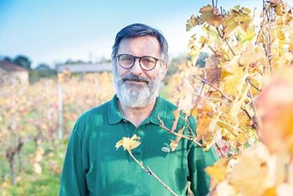 Découvrez l'ensable des vins du Château Laurou