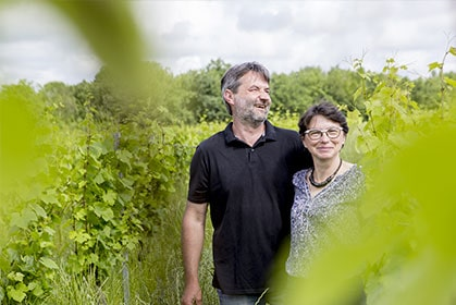 Découvrez l'ensable des vins du Château de Belaygues