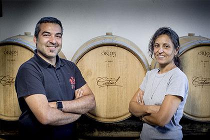 Découvrez l'ensable des vins du Vignobles Arbeau